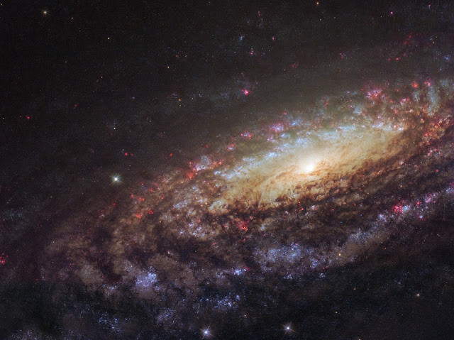 Góc nhìn cận cảnh về NGC 7331. Hình ảnh: ESA/Hubble & NASA/D. Milisavljevic (Purdue University).