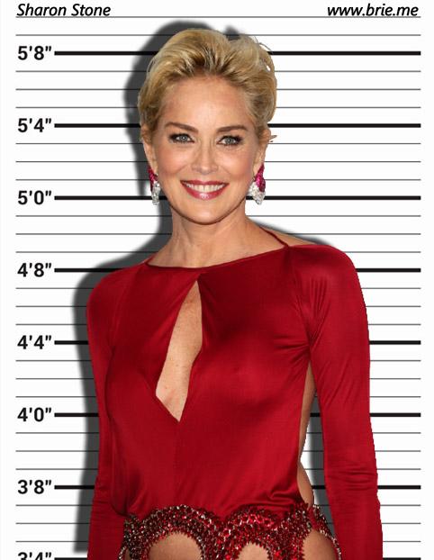 Sharon Stone mugshot