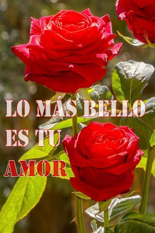 Lo más bello es tu amor