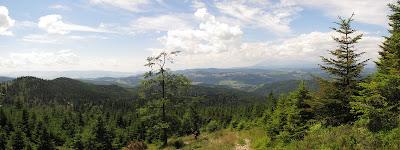Panorama na Tatry i Pieniny z podejścia na Radziejową.