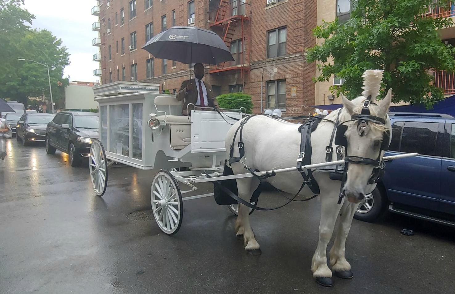 Dream Horse Carriage Company: 2019Dream Horse Carriage
