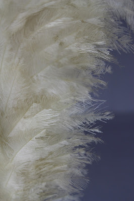 Plumes, feather, horsehair, conservation of military artifacts, antiques and collectibles, textile conservation, object conservation, Spicer Art Conservation