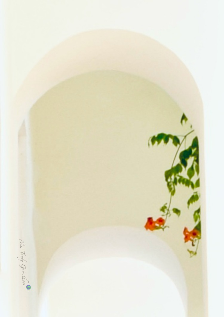 #16 of 20 pretty archways around the world; this one spotted in Ravello, Italy.| Ms. Toody Goo Shoes
