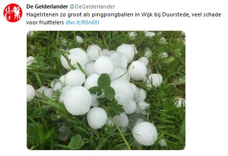 https://www.gelderlander.nl/utrecht/hagelstenen-zo-groot-als-pingpongballen-in-wijk-bij-duurstede-veel-schade-voor-fruittelers~a7052a66/
