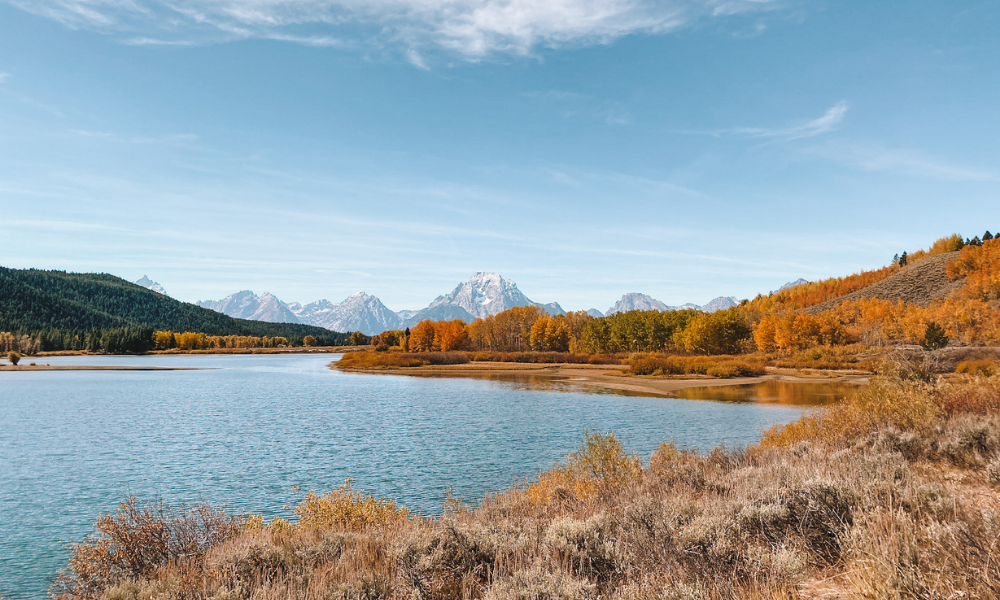 Oxbow Bend is a turnout with amazing fall foliage outside of Jackson Hole, Wyoming
