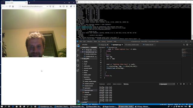 opencv WSL web camera ffmpeg