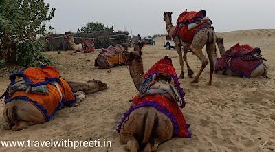 जैसलमेर की डेजर्ट सफारी और कैमल सफारी - Desert Safari in Jaisalmer