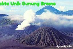 Fakta Unik Gunung Bromo