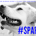 Free canine science event, June 1-3: Live streaming world wide! #SPARCS18