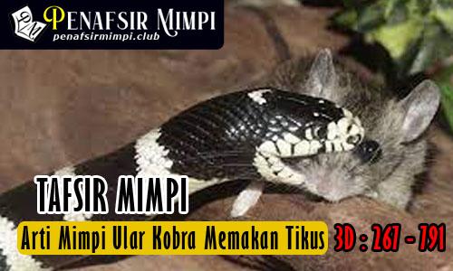 Tafsir Mimpi Melihat Ular Kobra Memakan Tikus