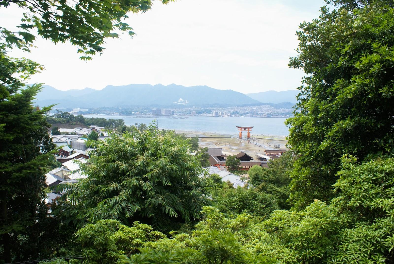 torii japan miyajima itsukushima