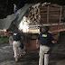 Polícia Rodoviária apreende carga ilegal de madeira na BR-316 no MA