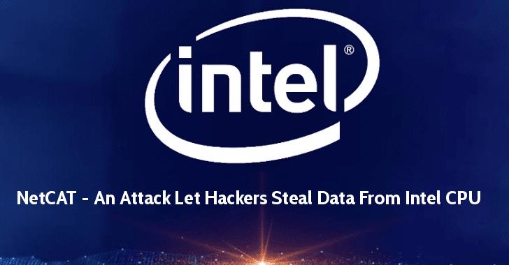 NetCAT attack