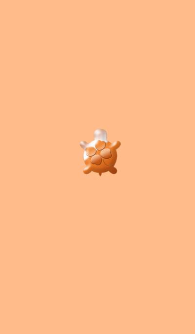 Strongest golden turtle orange