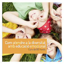educació a la diversitat curs online