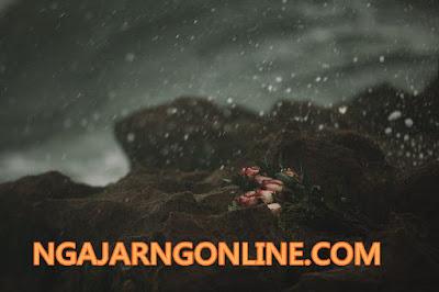 NGAJARNGONLINE.COM