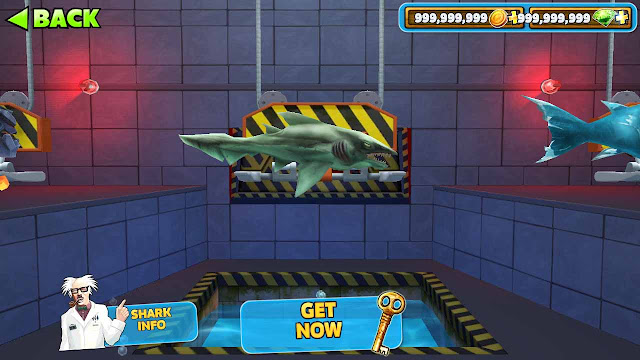 misteri hungry shark evolution