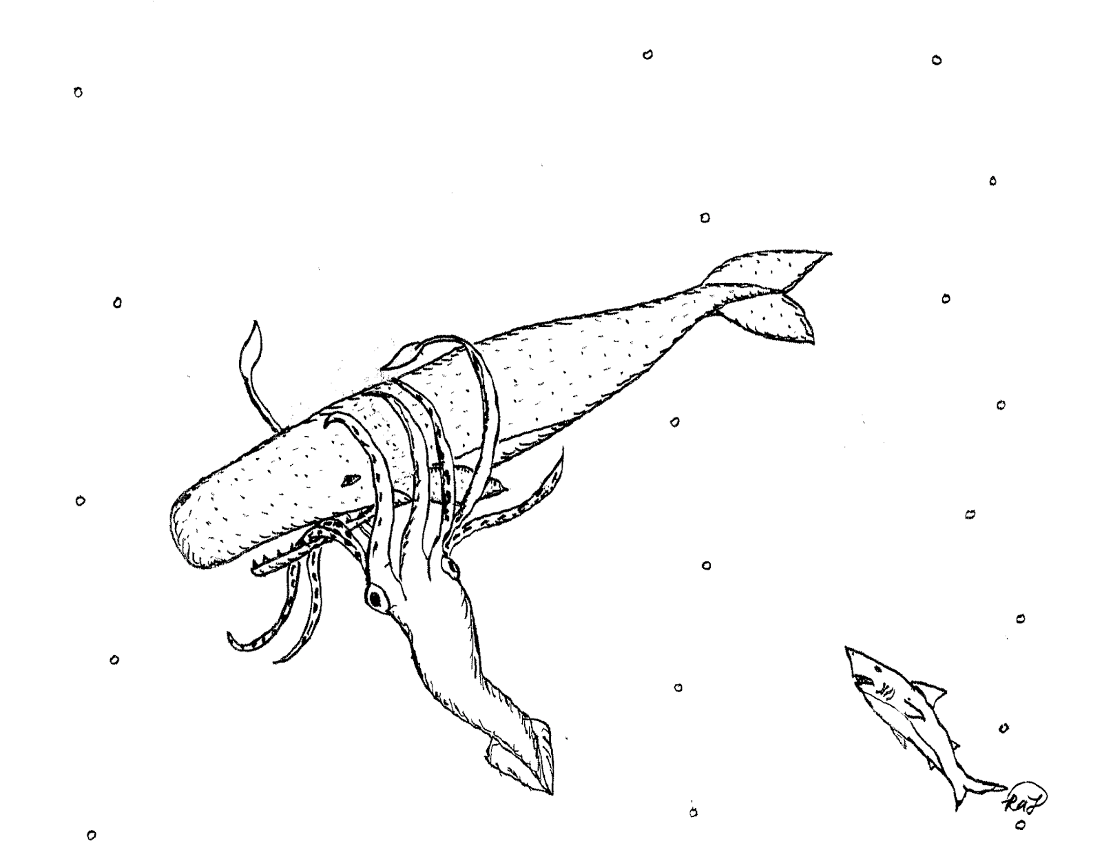 Robin 39 s great coloring pages sperm whale vs giant squid for Giant squid coloring page