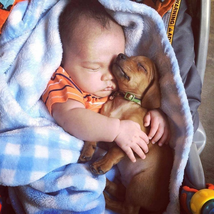 23 Adorable Pictures Prove Why Every Kid Should Have A Pet