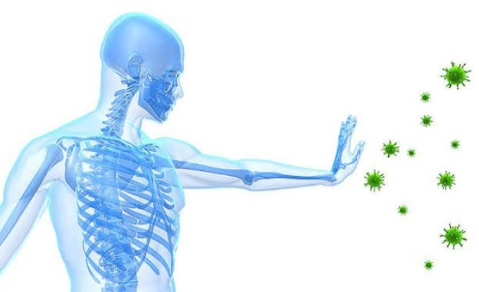 How to increase immunity ? | Strengthen Your Immunity