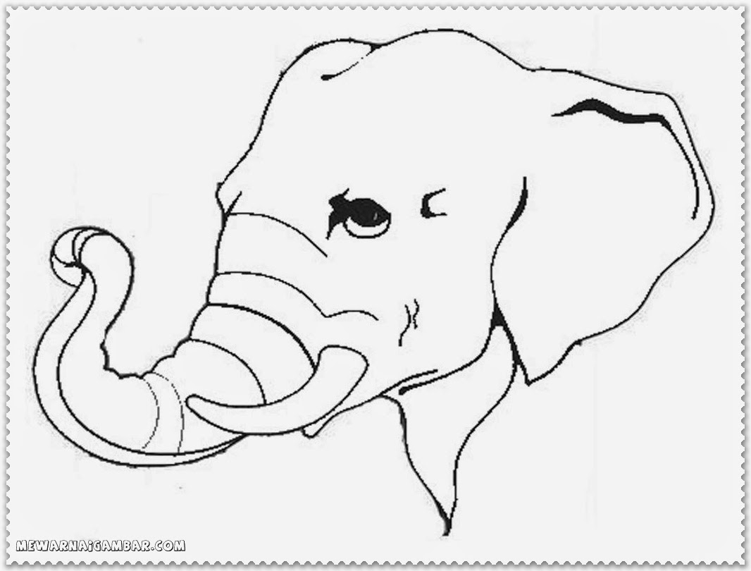 African Elephant Coloring Pages