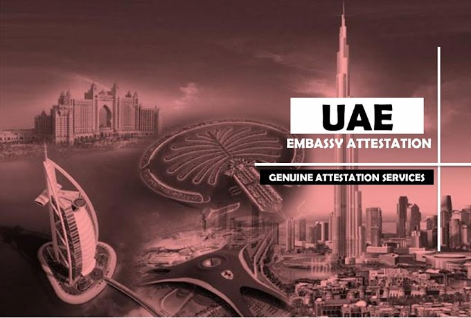 Must To See Spots In United Arab Emirates