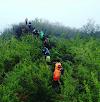Jelajah Nusantara : Keindahan Gunung Hauk 1325 MDPL, Atap Tertinggi Balangan Kalimantan Selatan