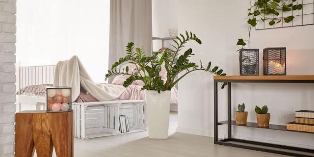 desain rumah tanpa ruang tamu
