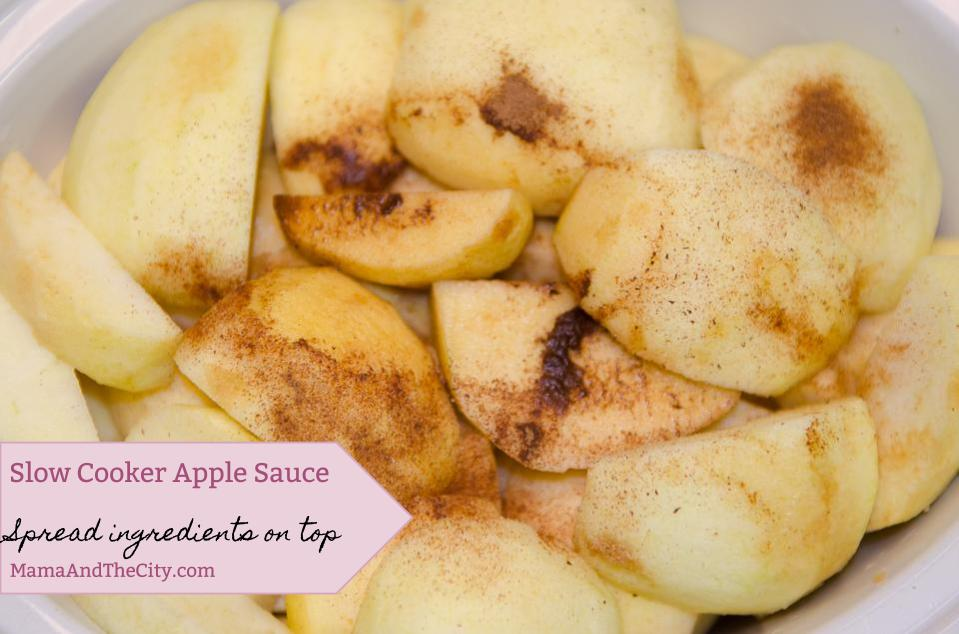 Slow Cooker Spiced Apple Sauce
