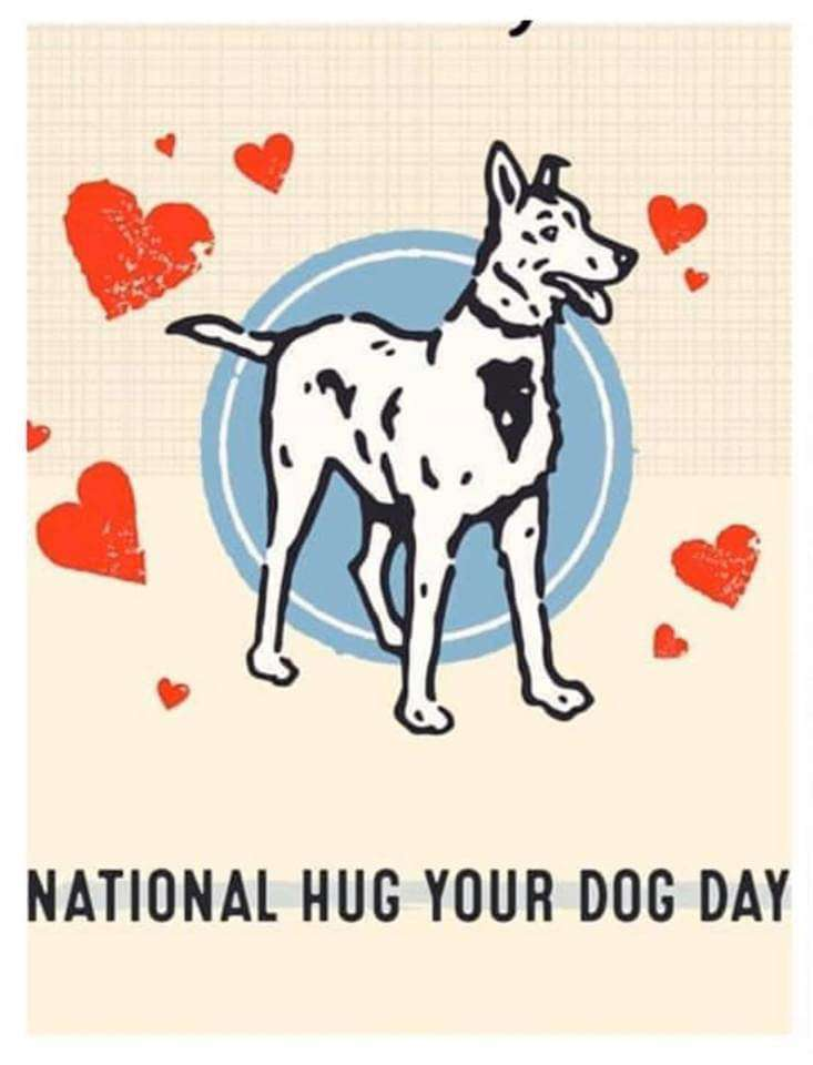 National Hug Your Dog Day Wishes for Instagram