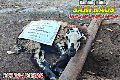 Harga Aqiqah Sari Raos di Bandung, Harga Aqiqah di Bandung, Aqiqah di Bandung, Aqiqah Bandung, Aqiqah,