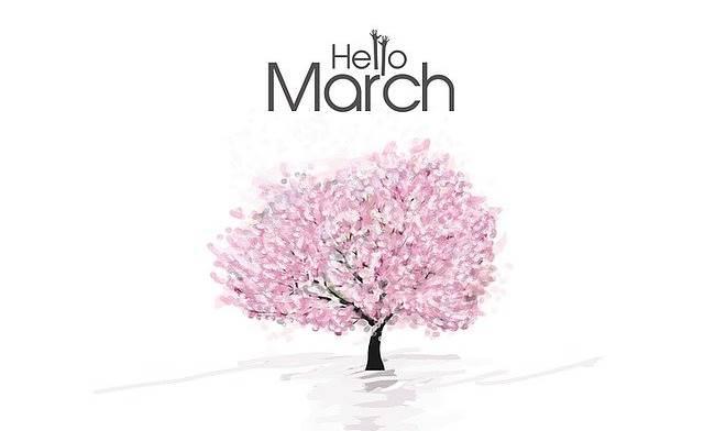 Kumpulan Pantun Semangat Bulan Maret
