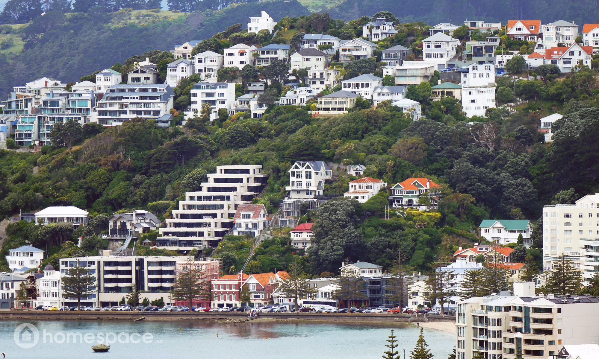 Buying a First Home during the New Zealand Housing Crisis