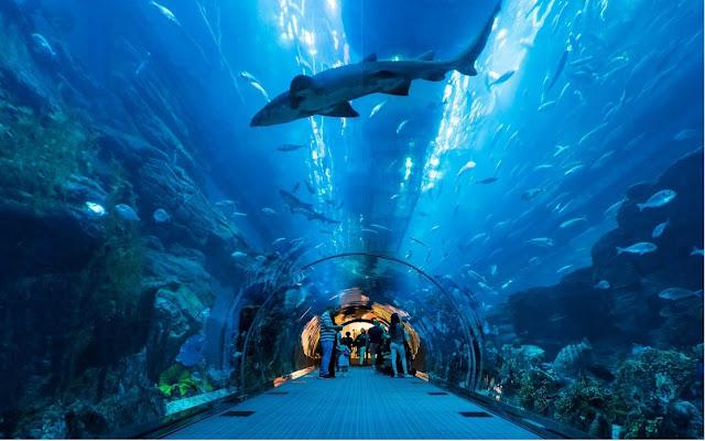 largest aquatic zoo in Africa