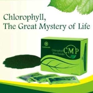 CMP, Chlorophyl Mint Powder