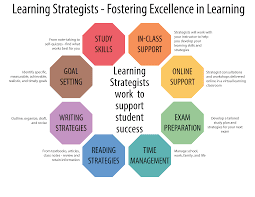 Active Learning Strategies and Examples
