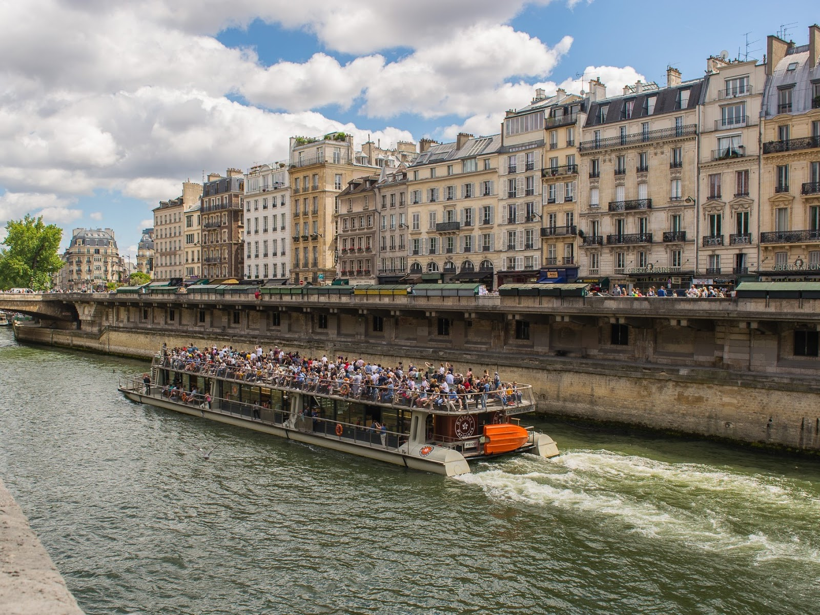 The view from the Paris Bridge