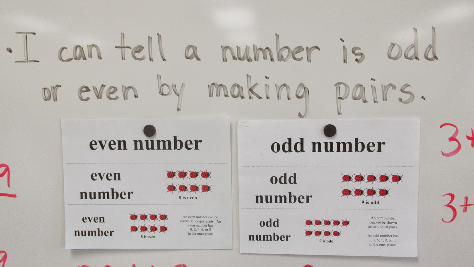 Odd And Even Numbers For Second Graders