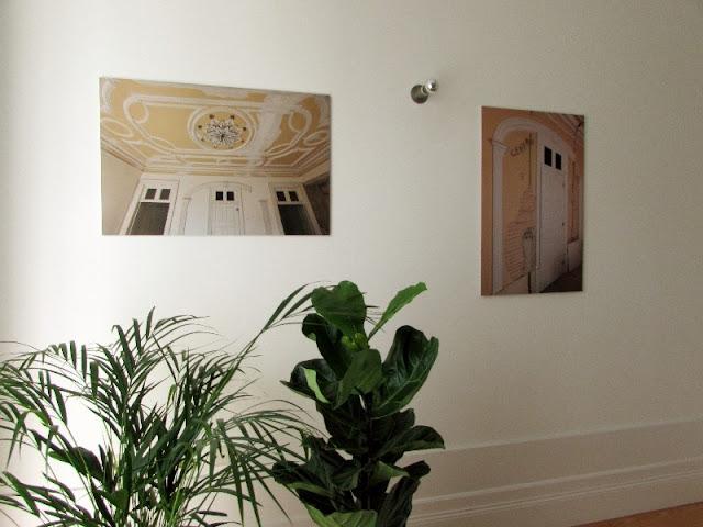plnatas e fotogafias decorando uma parede