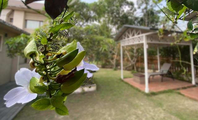 romantic spa in Kolkata