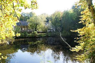 An einem kleinen Teich liegt das NABU Haus Wildenrath