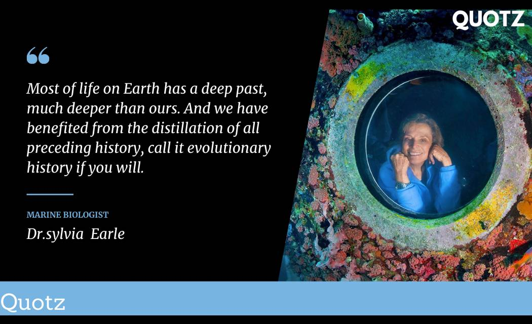 So, here are some famous Sylvia Earle quotes with quotes images. Let's check them out: