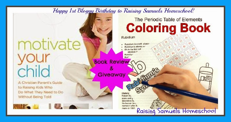 Happy 1st Bloggy Birthday!  A Book Review and a Giveaway!