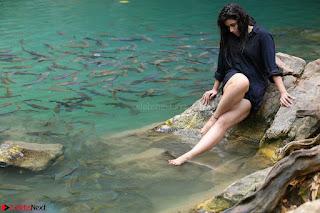 Mannara Chopra sizzles in song From Rogue Movie (6).JPG