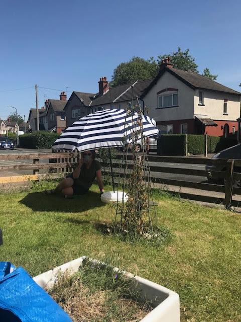 gardener under parasol