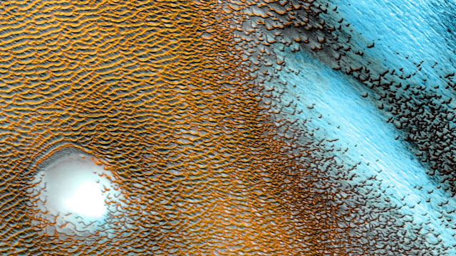 A colorized image of sand dunes at Mars's northern polar cap.