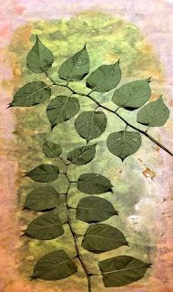 Wet Cyanotype_Sue Reno_Image 846