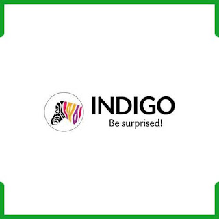 Indigo Paints Logo