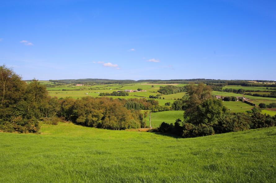 The Grainary Farm