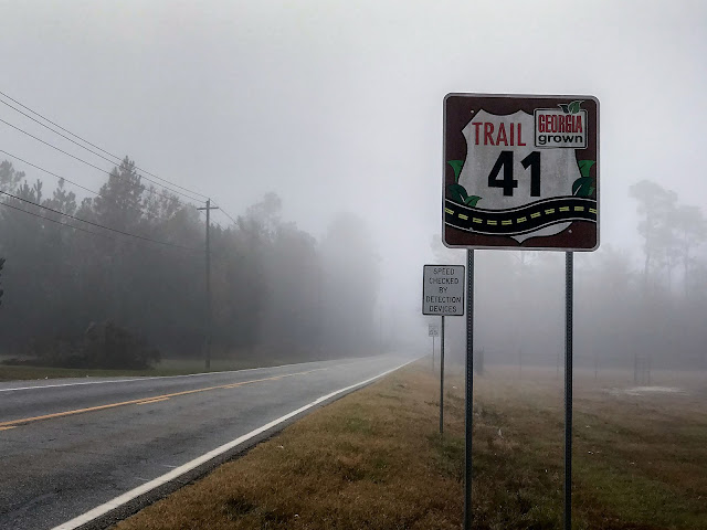 Georgia State Route 41